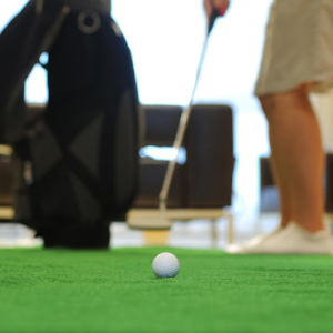 Buyer's Guide to Purchasing a Putting Green