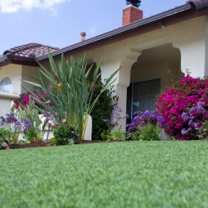 Get Rid of Weeds for Good with Artificial Grass