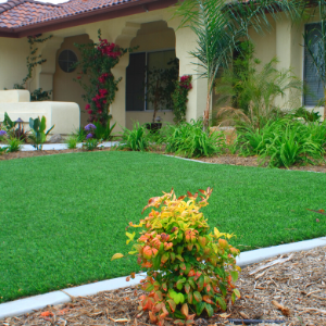 Pros and Cons of Having An Artificial Grass Front Lawn In Toronto